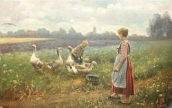 """GANSEHIRTEN"" woman & boy with six geese in grassy field, blue flowers back"
