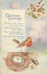 CHRISTMAS GREETINGS  robin & nest