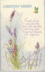 CHRISTMAS WISHES  lavendar, butterfly