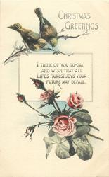 CHRISTMAS GREETINGS or NEW YEAR GREETINGS  two birds, roses