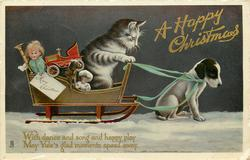 A HAPPY CHRISTMAS  kitten drives puppy & sled with toys