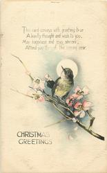 CHRISTMAS GREETINGS  bird, moon, blossom