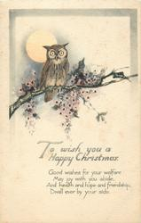TO WISH YOU A HAPPY CHRISTMAS  owl, moon, blossom