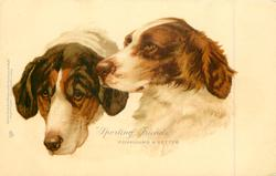 """SPORTING FRIENDS""  FOXHOUND & SETTER"