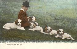 A HUNTING WE WILL GO  foxhound puppies