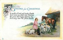 GREETINGS FOR CHRISTMAS  girl feeds dogs, horse behind