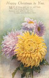 HAPPY CHRISTMAS TO YOU  3 mauve & a yellow chrysanthemum