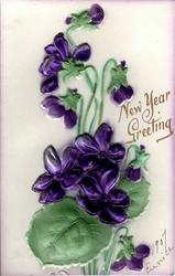 NEW YEAR GREETING  purple violets
