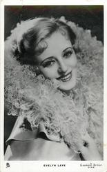 EVELYN LAYE  faces right, looks front, eyelashes, big feather collar