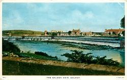 THE SALMON WEIR