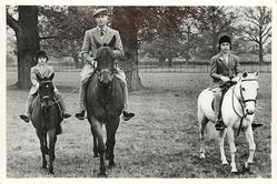 HIS MAJESTY KING GEORGE VI. RIDING IN WINDSOR GREAT PARK WITH THEIR ROYAL HIGHNESSES...
