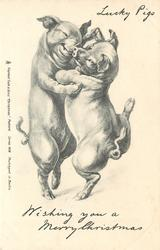 WISHING YOU  A MERRY CHRISTMAS, two pigs dance on hind legs facing each other & close