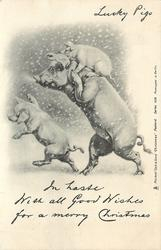 IN HASTE WITH ALL GOOD WISHES FOR A MERRY CHRISTMAS  three pigs go left in snow, smaller one in front, larger one behind with baby on its back