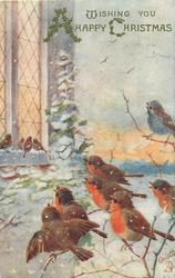 WISHING YOU A HAPPY CHRISTMAS or WITH BEST CHRISTMAS WISHES  robins perch singing right, looking to house, left, with birds on window sill