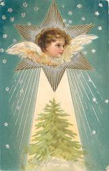 A HAPPY CHRISTMAS  angel in star above christmas tree, stars around