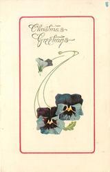 CHRISTMAS GREETINGS  two blue pansies & bud
