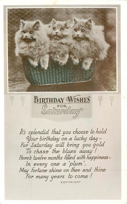 Kittens In Basket Cake