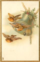 three robins fly, bell behind