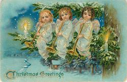 CHRISTMAS GREETINGS  three angels sit in fir tree playing trumpets