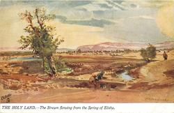 THE STREAM FLOWING FROM THE SPRING OF ELISHA