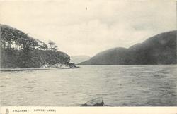 LOWER LAKE