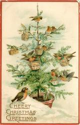 CHEERY CHRISTMAS GREETINGS  snow scene,  many robins on Xmas tree, baskets also
