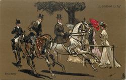 THE ROW  horse riding