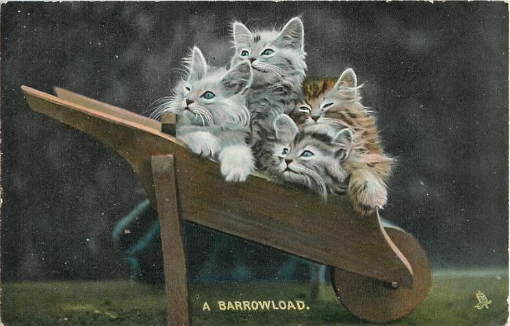 A BARROWLOAD