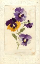 BEST CHRISTMAS WISHES  silk four pansies, yellow/pink/purple/white/black