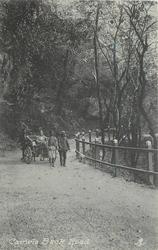 CAMELS BACK ROAD