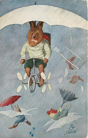 dressed rabbit flies bicycle, other rabbits & cockerel fly distantly