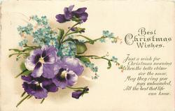 BEST CHRISTMAS WISHES  JUST A WISH FOR CHRISTMAS MORNING WHEN THE BELLS CHIME O'ER THE SNOW, MAY THEY RING YOU JOYS UNBOUNDED// KNOW  pansies