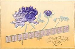 A MERRY CHRISTMAS  embossed inserts of purple anemones & purple ribbon