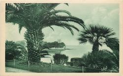 LA POINTE DE FORMICA A TRAVERS LES PALMIERS POINT FORMICA THROUGH THE PALM TREES