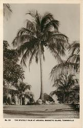 THE STATELY PALM AT ARCADIA, PALM AVENUE, MAGNETIC ISLAND