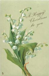 A HAPPY CHRISTMAS TO YOU  white lilies-of-the-valley