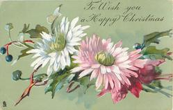 TO WISH YOU A HAPPY CHRISTMAS  two chrysanthemums, white/yellow left, pink/white/yellow right
