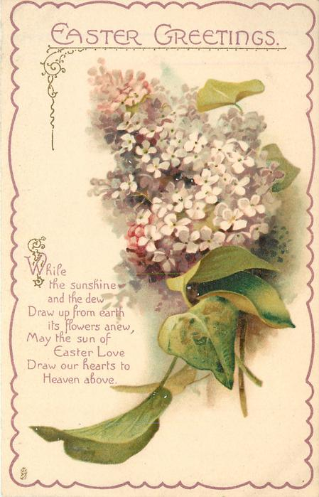 EASTER GREETINGS lilac