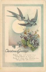 CHRISTMAS GREETINGS   two swallows fly over blue violets, central sun
