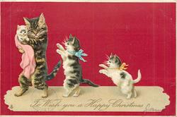 TO WISH YOU A HAPPY CHRISTMAS  cat family