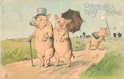 WISHING YOU A MERRY CHRISTMAS  man pig wearing top hat & smoking pipe & woman pig carrying parasol walk left on hind legs, young pig behind chases butterfly