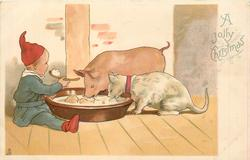A JOLLY CHRISTMAS  dwarf sits eating from bowl with pig & cat