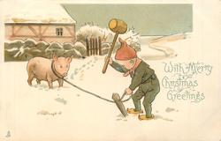 WITH MERRY CHRISTMAS GREETINGS  dwarf pounds in stake to which pig is tethered in snow