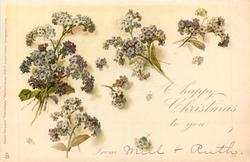 A HAPPY CHRISTMAS TO YOU FROM heliotrope