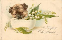 A HAPPY CHRISTMAS  pug & lilies-of the-valley