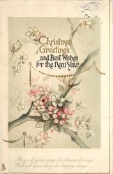 CHRISTMAS GREETINGS AND BEST WISHES FOR THE NEW YEAR branch with blossoms