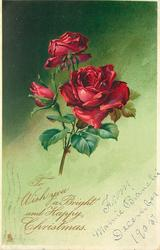 TO WISH YOU A BRIGHT AND HAPPY CHRISTMAS red roses with green background
