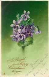 A BRIGHT AND HAPPY CHRISTMAS TO YOU. violets