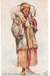 A SYRIAN SHEPHERD