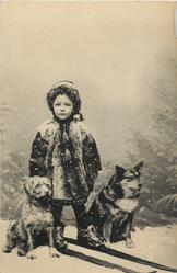 boy in snow with two dogs beside him, and has skies on